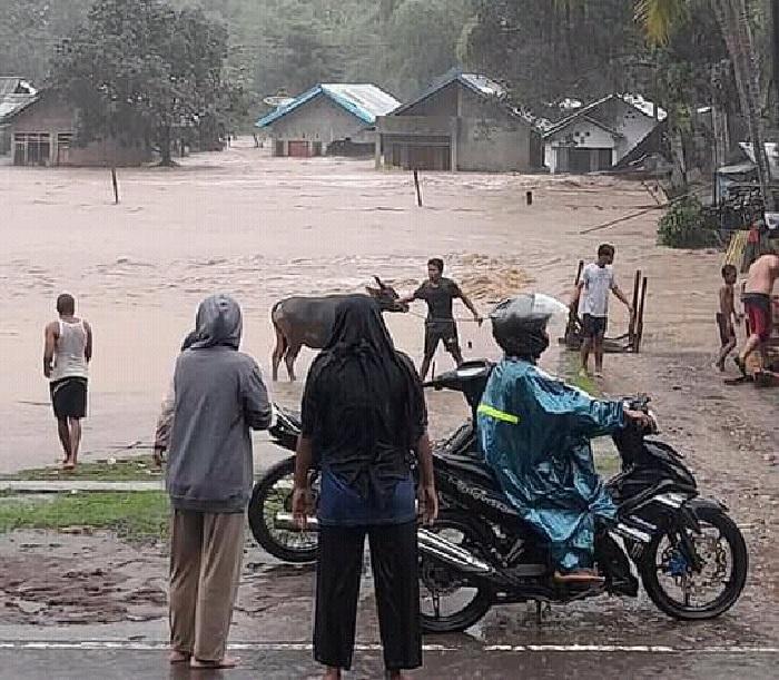 Potret rumah-rumah warga di Kecamatan Monta yang terendam banjir pada Jumat (2/4/2021). (Istimewa)